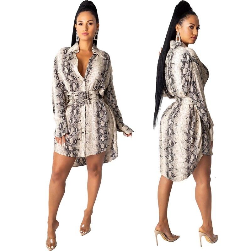 Snake Print Long Sleeve Shirt Dress Women Fall Office Short Mini Shirt Dress Button Turn Down Collar Elegant Casual Autumn Dress 2