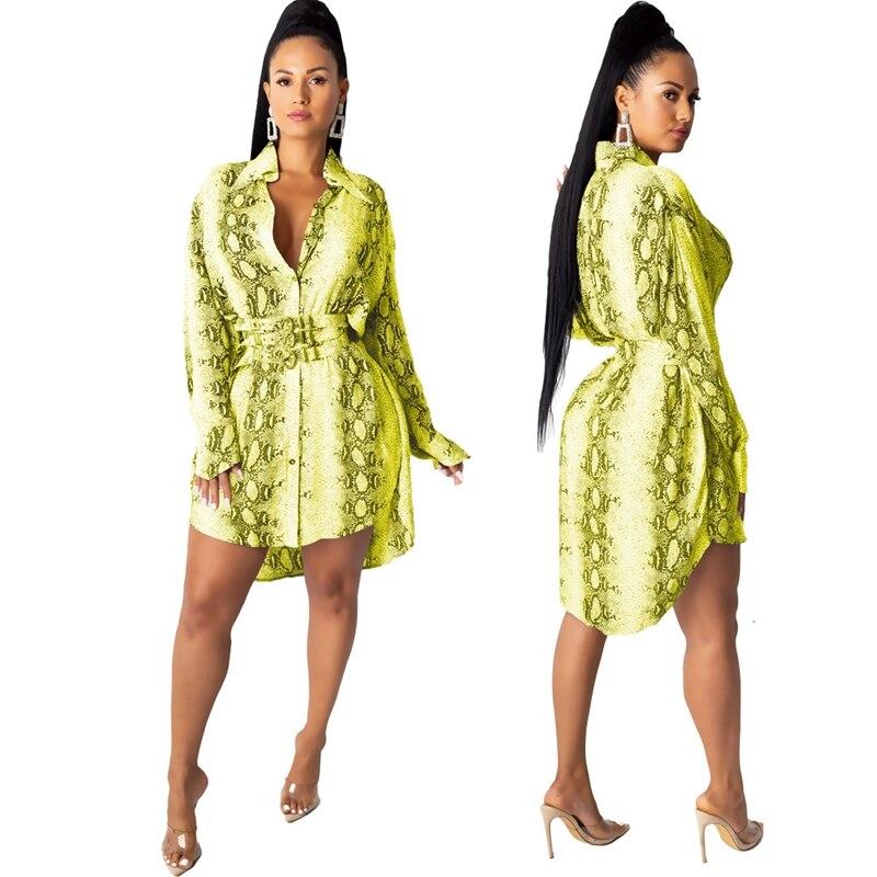 Snake Print Long Sleeve Shirt Dress Women Fall Office Short Mini Shirt Dress Button Turn Down Collar Elegant Casual Autumn Dress 3