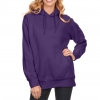 Pullover Hoodies Oversized Sweater Reg and Plus Size Sweatshirts